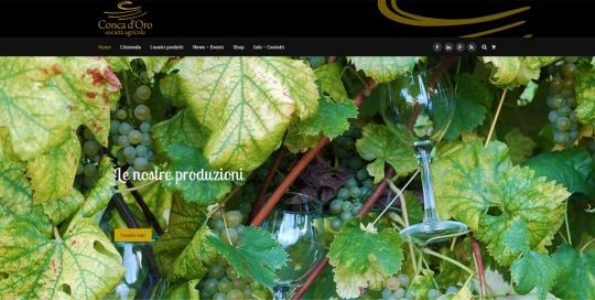 sito web cantina conca d'oro